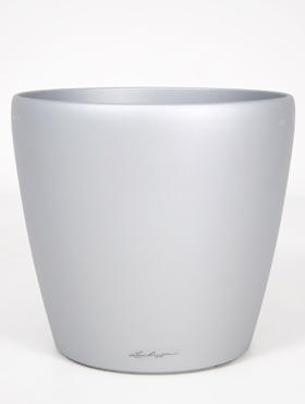 lechuza-gris-rond